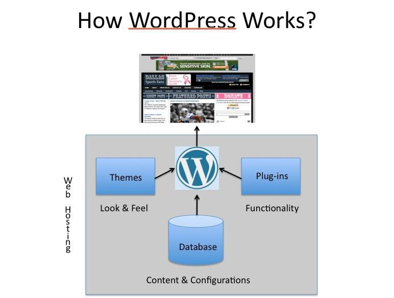 wordpress-explained